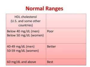 Cholesterol Good Bad Health