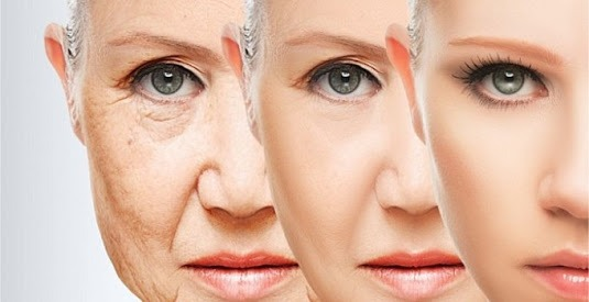 Top 7 foods to Fight Ageing