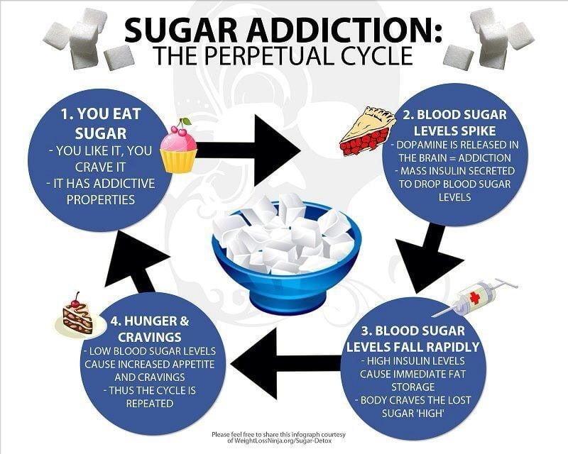 Sugar Addiction The Perpetual Cycle