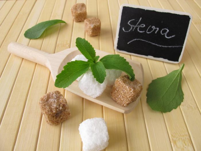 Stevia (Sugar Leaf)